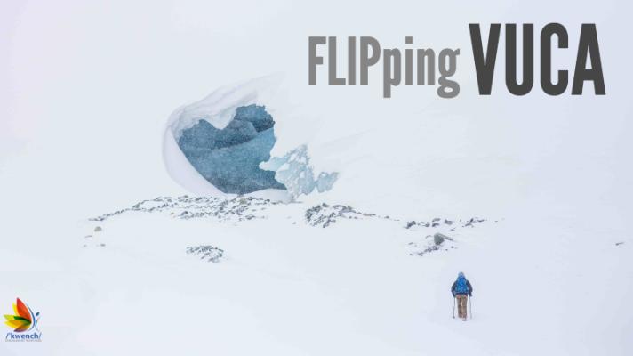 KwenchBlog_FLIPpingVUCA_